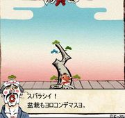 bonsai005-3.jpg