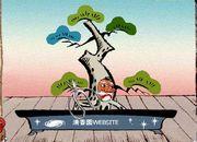bonsai007-3.jpg